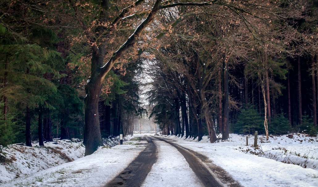 Top tips for carers in winter conditions